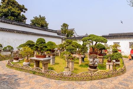Nature of The Humble Administrator's Garden,  a Chinese garden in Suzhou, a UNESCO World Heritage Site