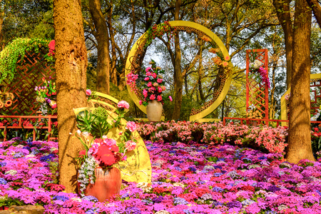 Nature and flowers of the  the Tiger Hill in Suzhou city, Jiangsu Province of Eastern China.
