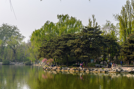 Nature of the Beijing Zoo, a zoological park in Beijing, China. Founded in 1906