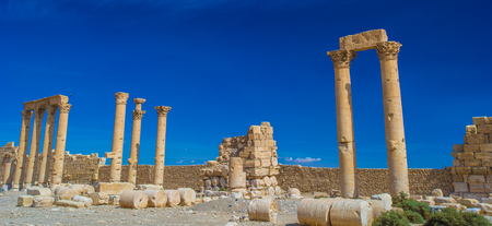 Columns in the inner court of the temple of Bel. Syria.