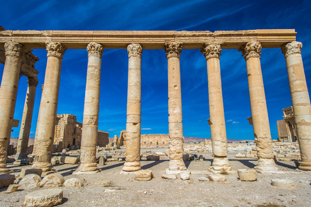 Great Colonnade at Palmyra, Syrian Desert. UNESCO World Heritage Site