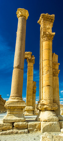 Columns of the Roman ruins of Palmyra, Syria Stock fotó