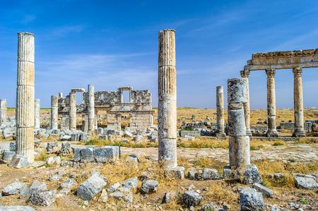 Ruins of the columns of Apamea, Syria.
