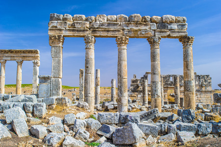 Ruins of the columns of Apamea, Syria.