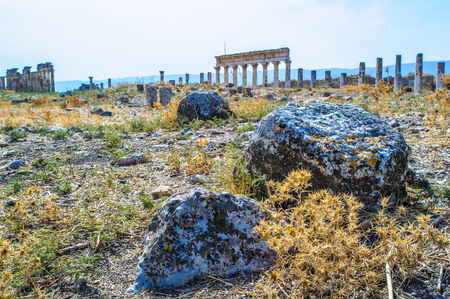 Stones of the ruins of Apamea, in Syria Stock Photo