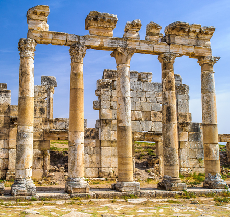 Ruins of the columns of Apamea, a treasure city and stud-depot of the Seleucid kings, and was the capital of Apamene. Syria. Stock Photo