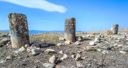Nature and stones of Apamea, Syria