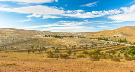 Landscape of the plains of Syria Stok Fotoğraf