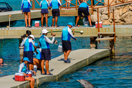 XCARET, MEXICO - NOV 7, 2016: Unidentified paople work for the Dolphins attraction of the Xcaret,  Maya civilization archaeological site, Yucatan Peninsula, Quintana Roo, Mexico Editorial