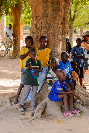 OUSSOUYE, SENEGAL - APR 30, 2017: Unidentified Senegalese little boys sit on the tree root in the Sacred Forest near Kaguit village
