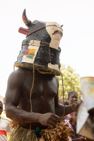 ORANGO ISL., GUINEA BISSAU - MAY 3, 2017: Unidentified local A man in a cow mask dances during Vaca Bruto, traditional Mask dance