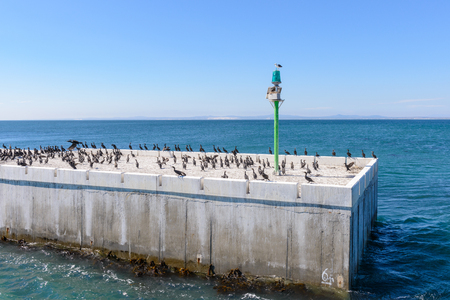 Pier of the Robben Island, South Africa