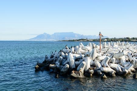 Pier i Cape Town Stock Photo