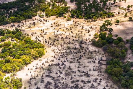 Aerial view of nature of Botswana, Africa
