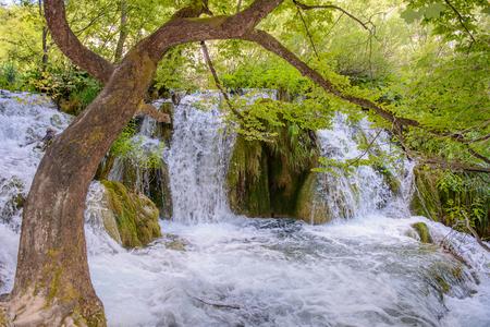 Icredible beautiful nature of the Plitvice lakes area in Croatia Stock Photo