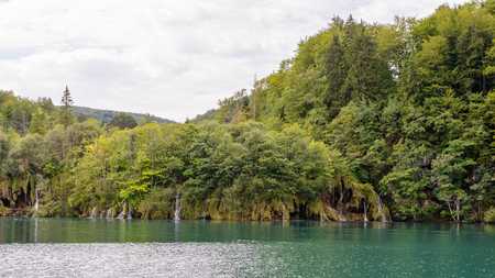 Nature of the Plitvice lakes area in Croatia