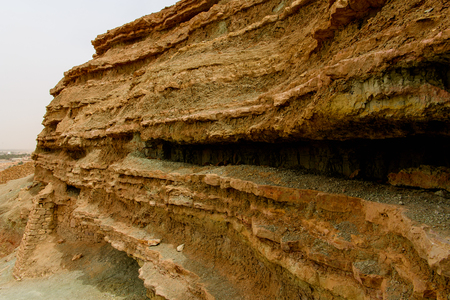 Nature in the El Meniaa's castle, El Golea oasis, Ghardaia Province, Algeria.