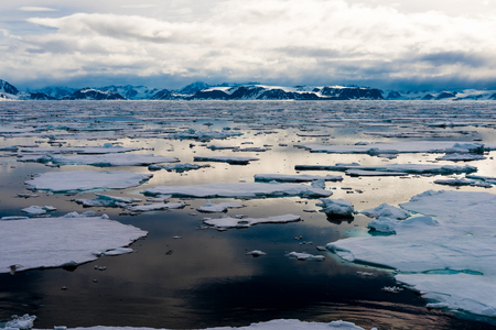 Pezzi di ghiaccio sull'acqua nell'Artico