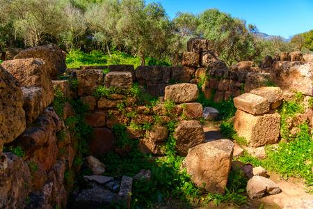 Nature and ruins of Tipasa, a colonia in Roman province Mauretania Caesariensis, nowadays Algeria.