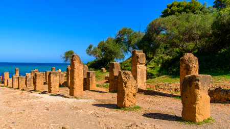 Nature and ruins of Tipasa, a colonia in Roman province Mauretania Caesariensis, nowadays Algeria.