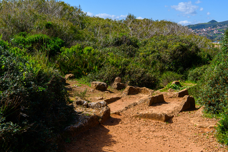 Nature of Tipasa, a colonia in Roman province Mauretania Caesariensis, nowadays Algeria.