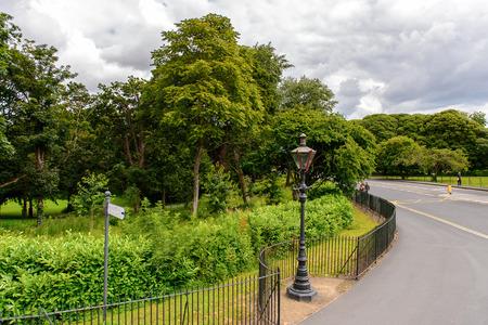 Phoenix park, Dublin, Ireland. Фото со стока