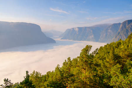 Nature of Aurlandsfjellet, a mountainous area and plateau, Sogn og Fjordane county, Norway.
