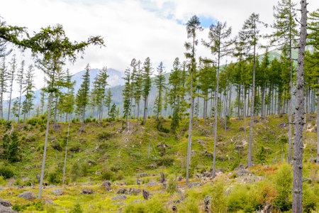 Beautiful nature of the High Tatra Mountains (Vysoke Tatry) a mountain range along the border of Slovakia and Poland