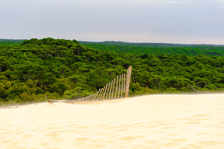 Beautiful view of the Dune of Pilat (Grande Dune du Pilat), the tallest sand dune in Europe.