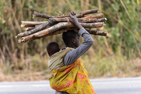 KUMASI, GHANA - Jan 16, 2017: Unidentified Ghanaian woman carries her baby on her back and tree branches on her head. People of Ghana suffer of poverty due to the bad economy Éditoriale
