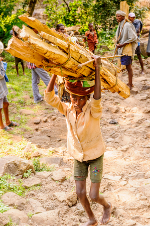 OMO, ETHIOPIA - SEPTEMBER 19, 2011: Unidentified Ethiopian man carries wood. People in Ethiopia suffer of poverty due to the unstable situation