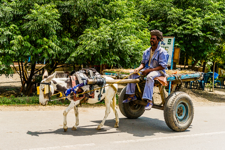OMO, ETHIOPIA - SEPTEMBER 21, 2011: Unidentified Ethiopian man on a horse carriage in the street. People in Ethiopia suffer of poverty due to the unstable situation Editorial