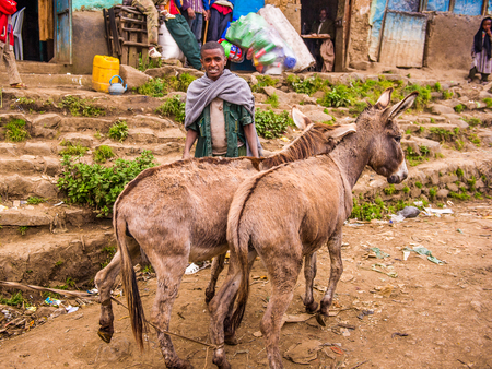 OMO, ETHIOPIA - SEPTEMBER 21, 2011: Unidentified Ethiopian man with donkeys in the street. People in Ethiopia suffer of poverty due to the unstable situation