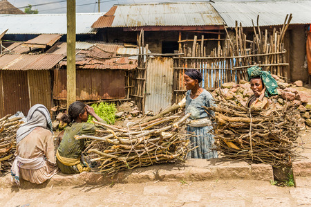 OMO, ETHIOPIA - SEPTEMBER 21, 2011: Unidentified Ethiopian women and banches of wood. People in Ethiopia suffer of poverty due to the unstable situation