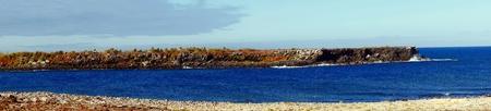 islas: Panorama of the Islas Plaza in the Galapagos, Ecuador Stock Photo