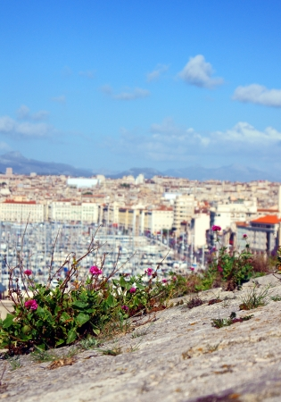 Flowers Grow Above the City of Marseille, France Stock Photo - 14942434