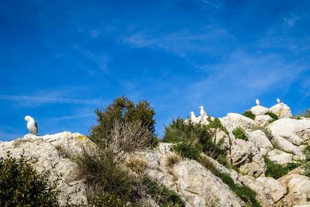 murcia: Seascape near Calp Penial difach, Valencia y Murcia, Spain