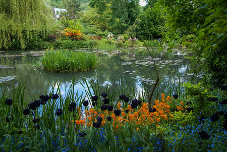 Spring flowers in the gardens of Giverny, France