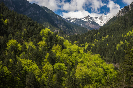 olimpo: Paisaje pintoresco en el Monte Olimpo, el norte de Grecia Foto de archivo