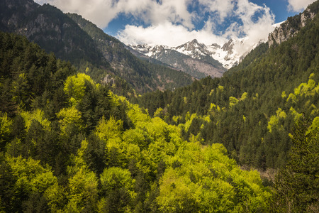 olympus: Picturesque landscape on Mount Olympus, Northern Greece Stock Photo