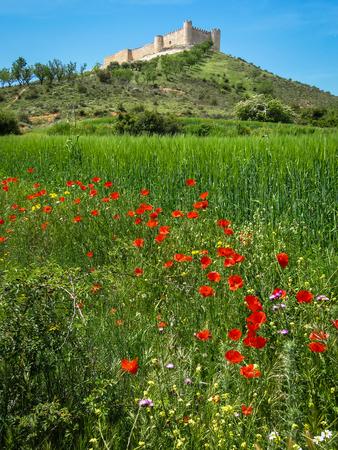 cid: Ruins of Cid castle, Jadraque, Castilla la Mancha, Spain