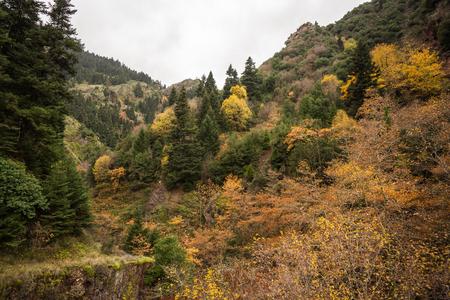 karpenisi: Scenic mountain autumn landscape at Evritania, Greece
