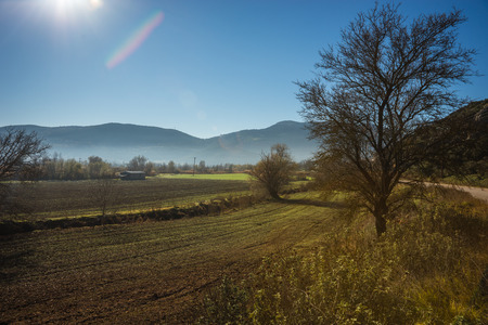 early fog: Early morning in the mountains, field and fog near Stimfalia lake, Peloponnese, Greece