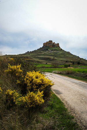 yelloow: Image of medieval castle in Gormas and yelloow flowers, Soria, Castilla y Leon, Spain