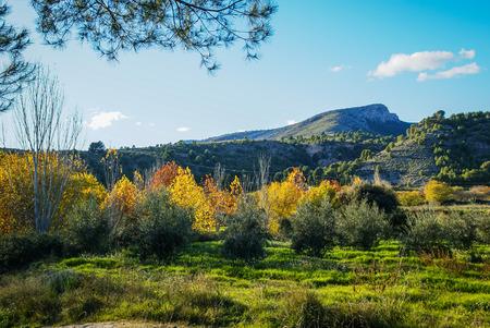 crus: Colorful autumn landscape   in Caravaca de la Crus, Spain