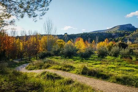 crus: Autumn landscape with colorful leaves in Caravaca de la Crus in Spain