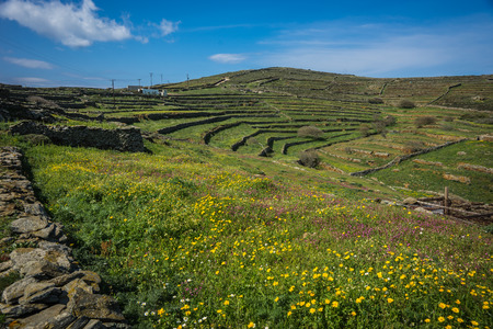 Beautiful landscape with fields, mountains and flowers at Tinos, Greece Stock Photo
