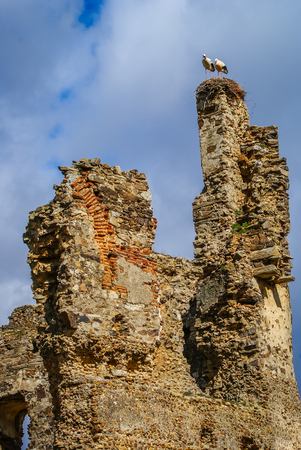 castilla: Storks on ruins of castle in Laguna de Negrillos, Castilla y Leon, Spain