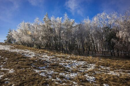 Foggy landscape with icy rain on Mount Ai Petri in the Crimea in Russia
