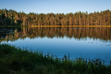 Picturesque landscape with  lake and reflections in Karelia in Russia 免版税图像